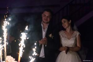 Nunta 43